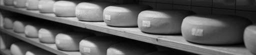 Secaderos para quesos